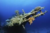 Photo: dd001200Shipwreck Carnatic Sha'ab Abu Nuhas, Red Sea, Egypt