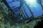 Photo: dd001246Shipwreck Umbria and Diver Wingate Reef, Red Sea, Sudan