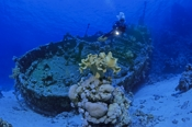 Photo: dd001250     Shipwreck tugboat-Tienstin and Diver , ,  Reef Abu Galawah Kebir, Red Sea, Egypt