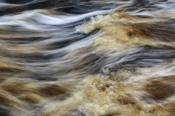 Photo: dd011083Big Shoals, Suwanee River, Florida, USA