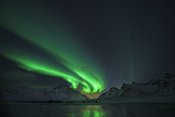 Photo: dd011201     Northern Lights , Aurora borealis,  Flakstad, Lofoten, Norway