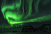 Photo: dd011301     Northern Lights , Aurora borealis,  Haukland Beach, Lofoten, Norway