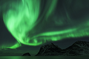 Photo: dd011302     Northern Lights , Aurora borealis,  Haukland Beach, Lofoten, Norway