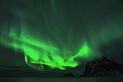 Photo: dd011306     Northern Lights , Aurora borealis,  Haukland Beach, Lofoten, Norway
