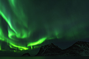 Photo: dd011309     Northern Lights , Aurora borealis,  Haukland Beach, Lofoten, Norway